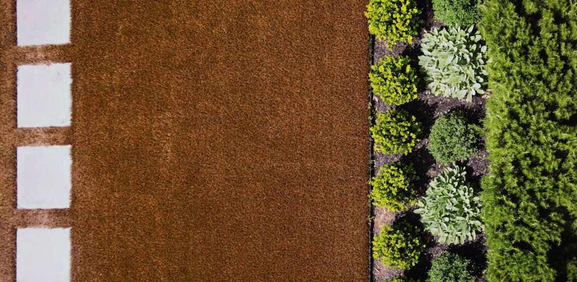 Composição de Jardins