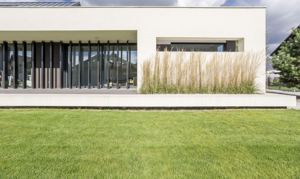 Vale a pena usar grama sintética para jardim em casa?
